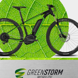 Hoga-Netzwerk: Greenstorm Mobility